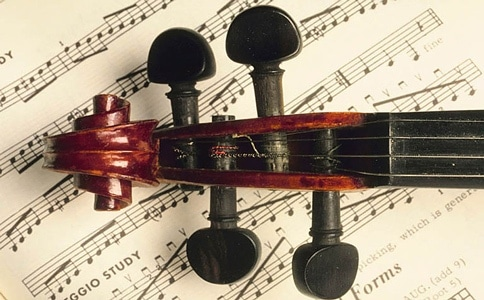 violin pegs and sheet music